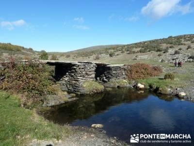 Trekking y aventura, Parque Natural del Hayedo de Tejera Negra; belen viviente de buitrago
